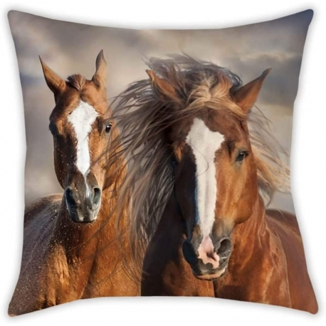 COUSSIN CHEVAUX